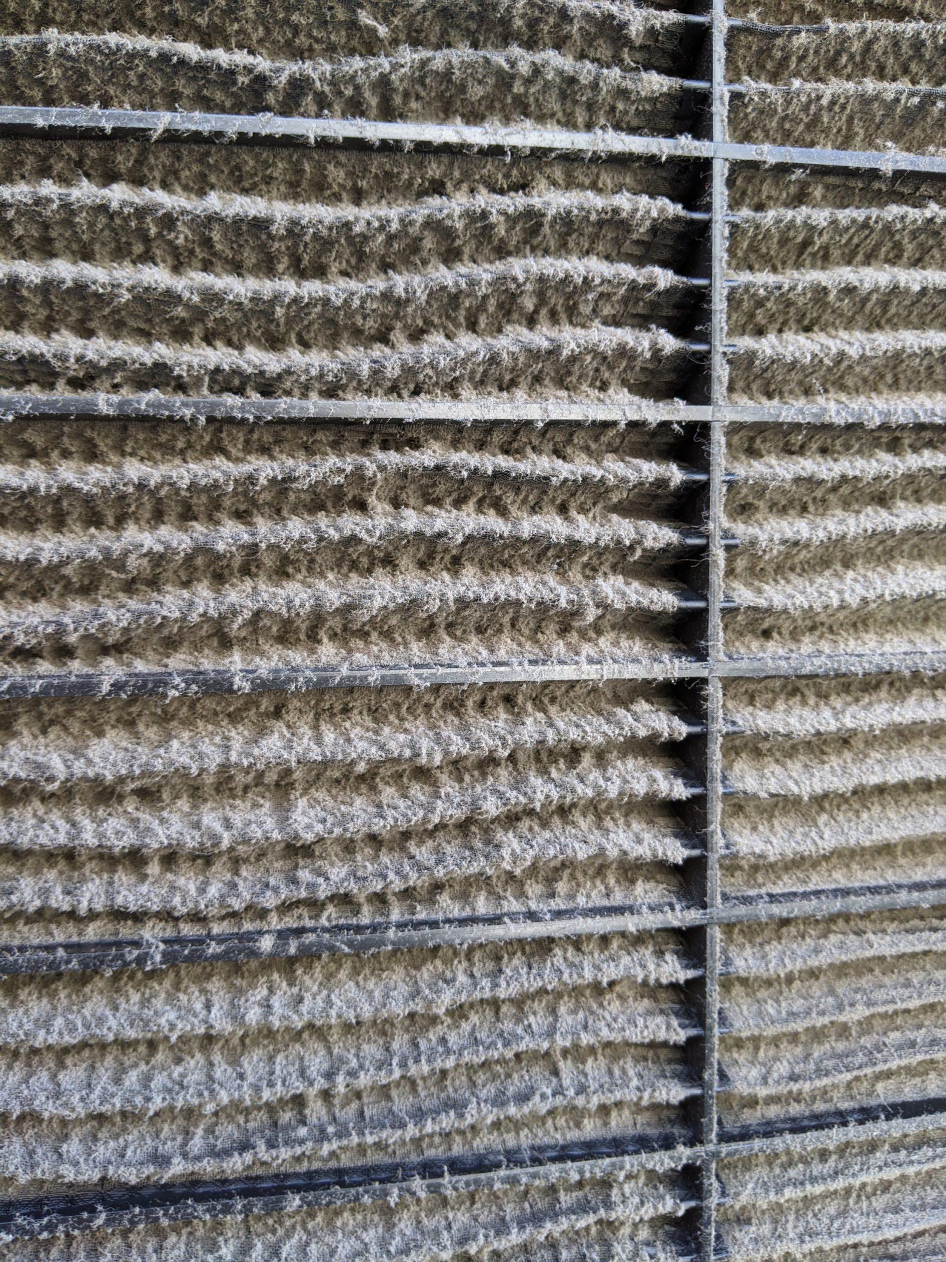 大阪市中央区東心斎橋飲食店様の業務用エアコンクリーニング現場写真。エアコンフィルタ汚れ